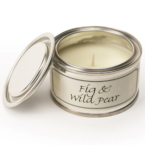Fig and Wild Pear Paint Pot Candle