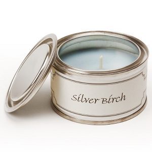 Silver Birch Paint Pot Candle