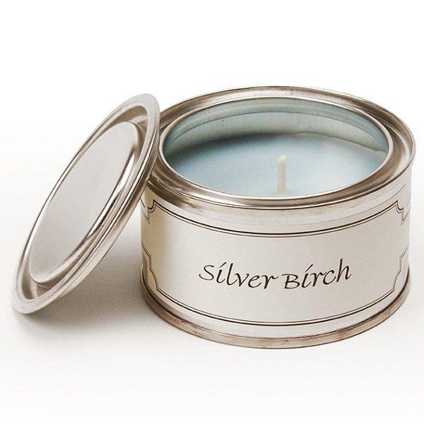 Silver Birch Paint Pot Candle