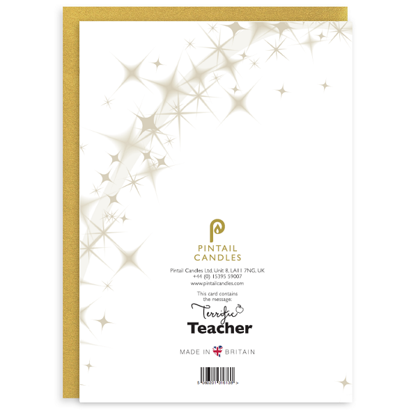 Terrific Teacher Back of Card and Envelope