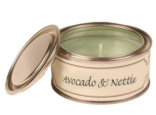 Avocado & Nettle Paint Pot Candle