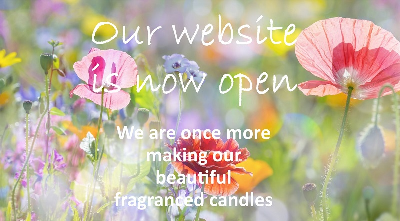 Flower Meadow with the words Our Website is Now Open